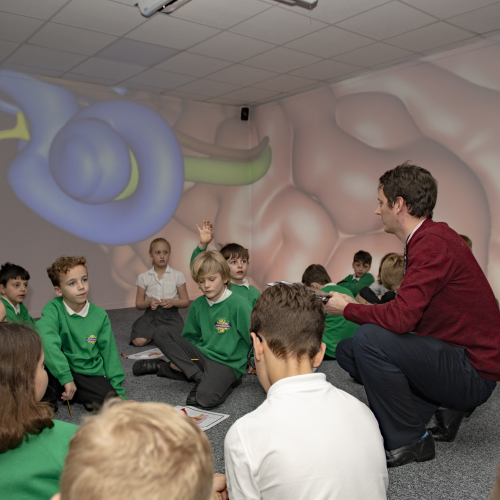 Learning about the Ears | Immersive Classroom