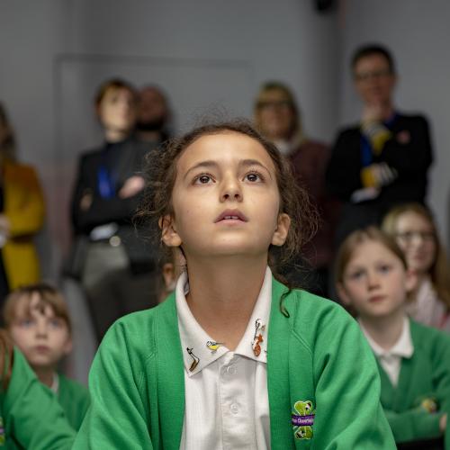 Wondering | Immersive Classroom